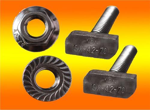 10 Stück Hammerkopfschrauben M8 x 20mm + 10 Sperrzahnmuttern A2